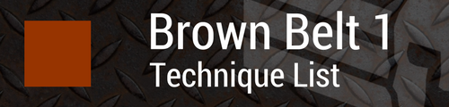 Brown Belt 1