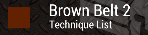 Brown Belt 2