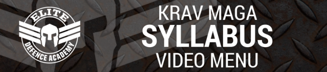 Syllabus video menu header